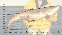 menu_fishingstatistics